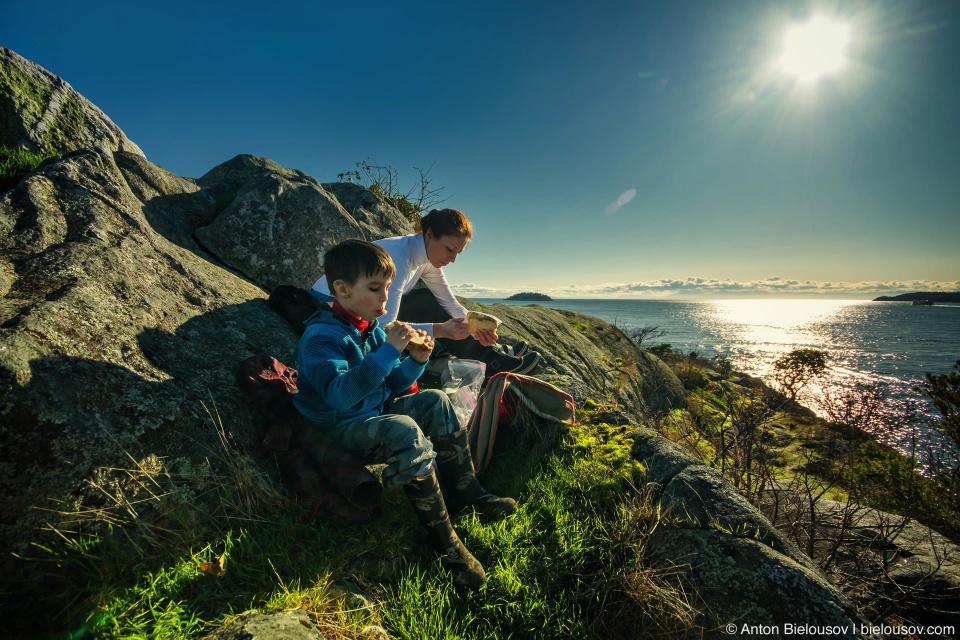Перекус бутербродами с наблюдением за колибри на острове Уайт в Whytecliff