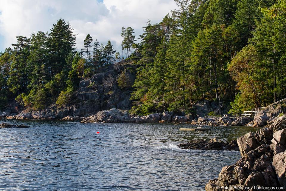 Bowen Island Shore