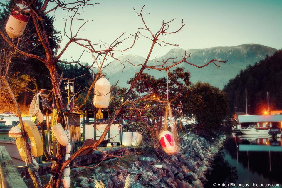 Bowen Island wish tree