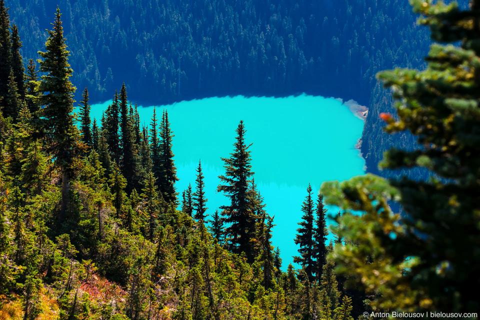 Вид на Cheakamus Lake (Garibladi Provincional Park) с Вистлера (Whistler, BC)